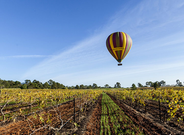 Experience ballooning in wine country in the Hunter Valley